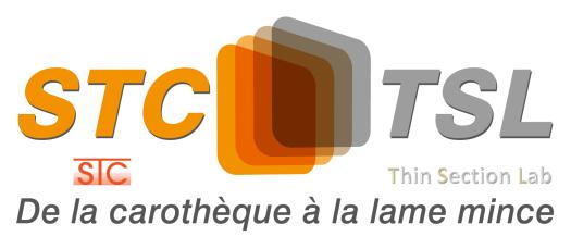 STC-TSL